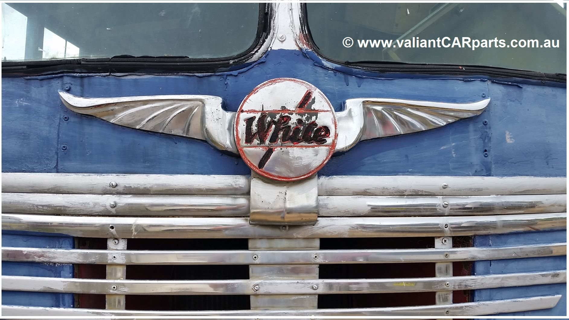 1954_WB22_WHITE_Lismore_vintage_bus_Coach_for_sale-Front_badge